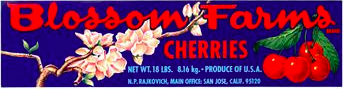 The shipping crate label for a cherry orchard near where I was raised in San Jose, California