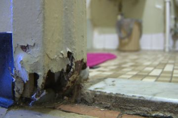 Mother of three battles mold at Brownsville home